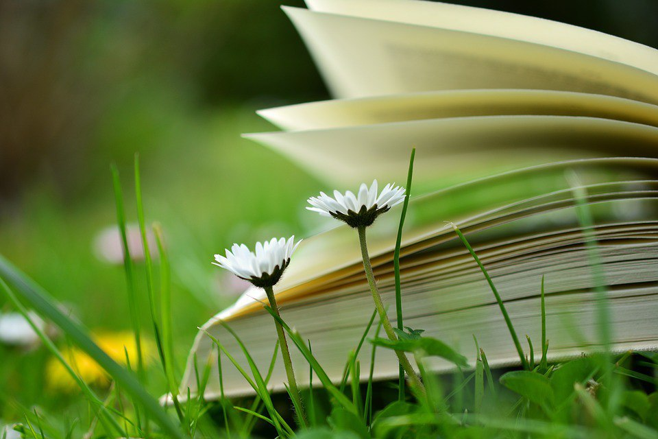 Литературная викторина пройдет в библиотеке № 27 Ховрина