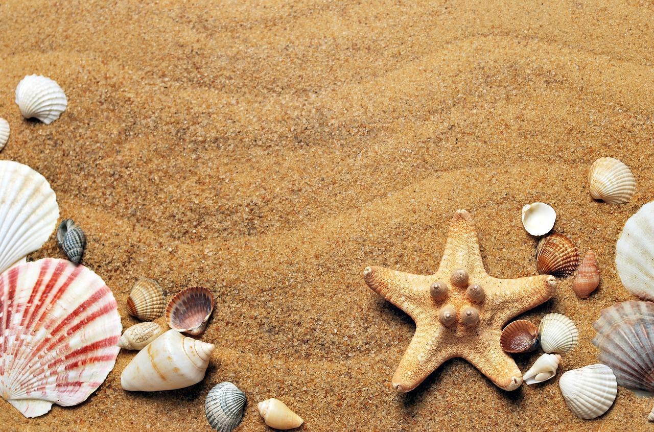 Сеанс песочной терапии проведут в Ховринском доме культуры